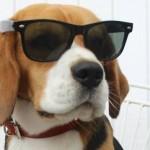 Как се лекува влошено зрение и други вредни навици